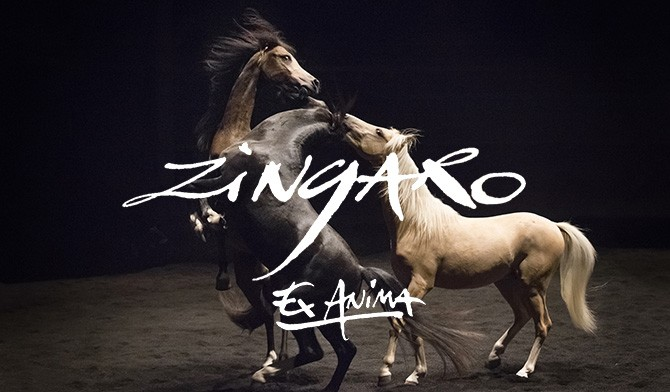 "Spectacle ""ZINGARO"""